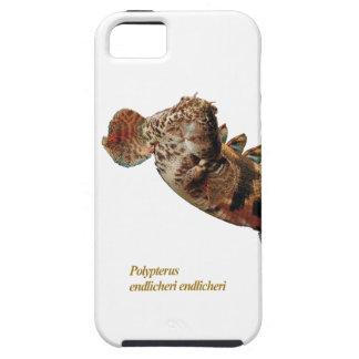 "IPhone 5 Case ""of Polypterus endlicheri"" and No.01"