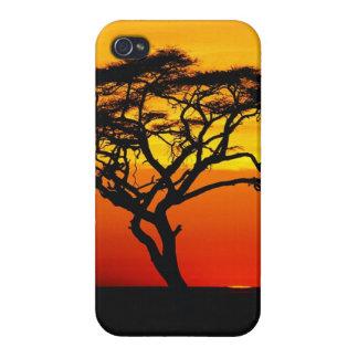 Iphone 5 case Sunset In africa