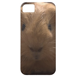 iPhone 5 case with guinea pig