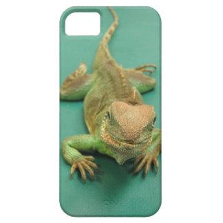 iPhone 5 case with iguana on blue-green background