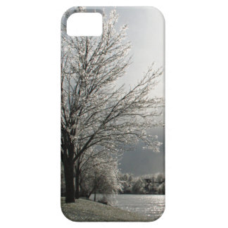 iPhone 5 case with photo of icy winter landscape