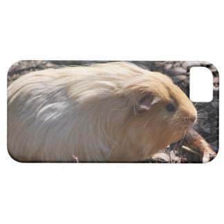 iPhone 5 case with white and brown guinea pig