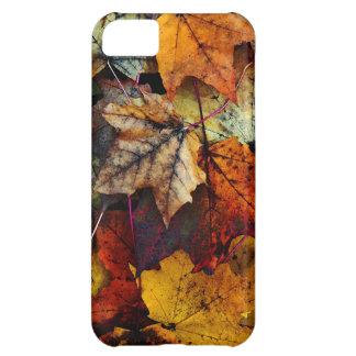 iPhone 5 - Fall Foliage Case-Mate iPhone Case