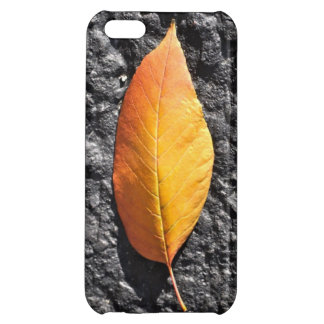 iPhone 5 Glossy Hardshell Case: Orange Leaf iPhone 5C Covers