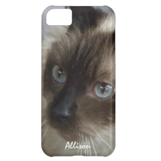 iPhone 5: Personalized Siamese Kitty Case