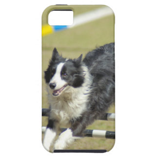 iphone 5 vibe QPC template iPhone 5 C - Customized iPhone 5 Cases