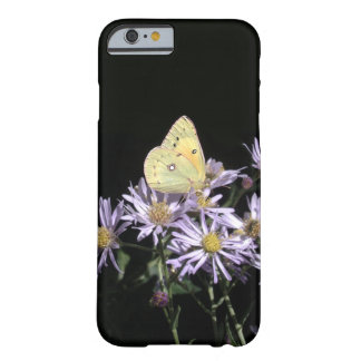 iPhone 6/6s, Barely There Butterfly on Asters Barely There iPhone 6 Case