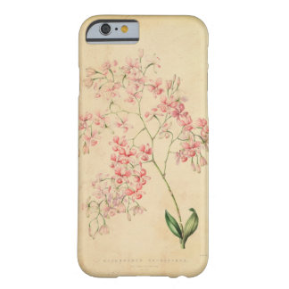 iPhone 6 case - vintage orchid illustration Barely There iPhone 6 Case