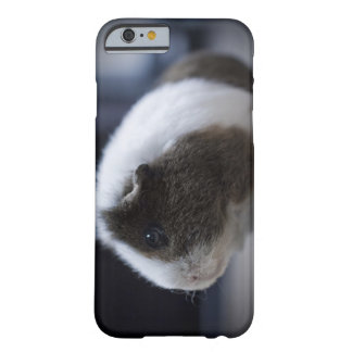 iPhone 6 case with cute guinea pig