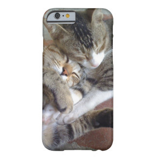 iPhone 6 case with kittens napping