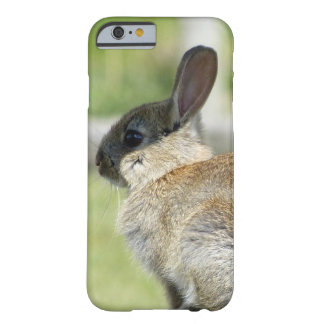 iPhone 6 case with rabbit in profile Barely There iPhone 6 Case