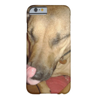 Iphone 6 Funny dog Barely There iPhone 6 Case