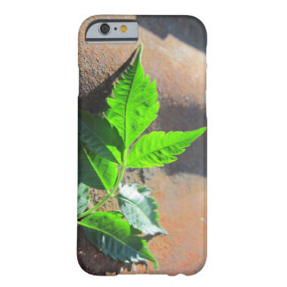 iPhone 6 Leaf on Tin Barely There iPhone 6 Case
