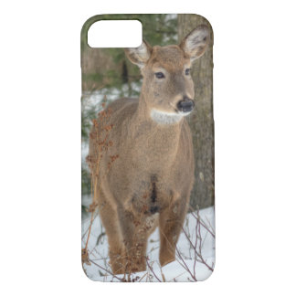 iPhone 7 Case - White Tailed Deer
