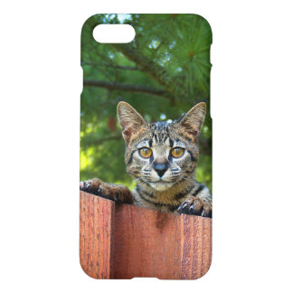 iPhone 7 Matte Case With Savannah Kitten
