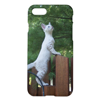 iPhone 7 Matte Case With White Kitten