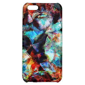 iPhone case 3 iPhone 5C Cases