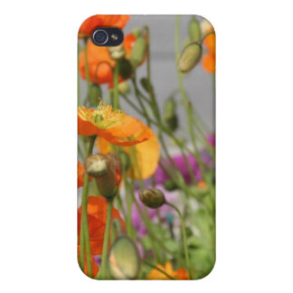 iPhone case 4& 4s flowers iPhone 4 Covers