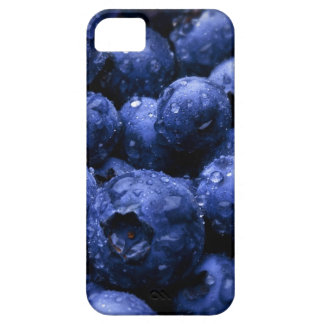 iphone case,blueberry iPhone 5 case