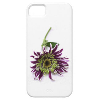 Iphone case case for the iPhone 5