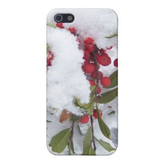 Iphone case Holly berries in the snow iPhone 5 Cases