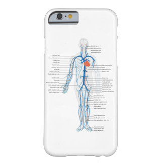 iPhone Case Human Circulatory System of Veins