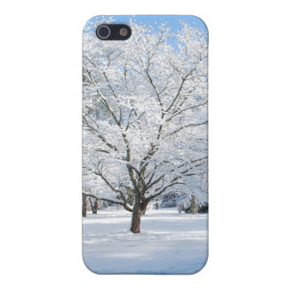 iPhone case Winter Wonderland iPhone 5 Cases
