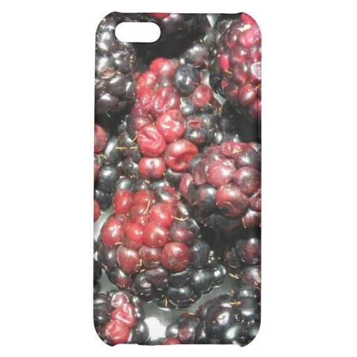 iPhone in blackberry disguise Case For iPhone 5C