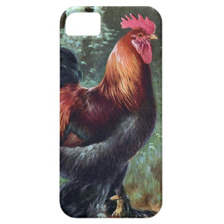 iPhone SE + iPhone 5/5S, Barely There - Rooster iPhone 5 Case