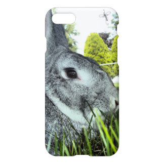 iPhone Skin with Rare Rabbit American Chinchilla iPhone 8/7 Case