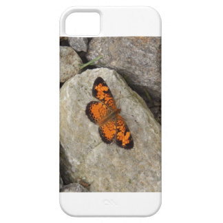 Ipod 5 Case with Monarch Butterfly