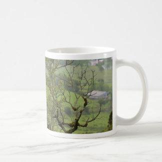 Ireland Bushes Mugs