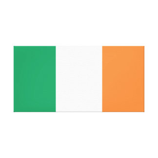 Ireland National World Flag Canvas Print