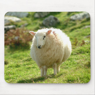 Ireland Sheep Mousepad