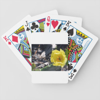 iridescent bee on nopales flower bicycle playing cards