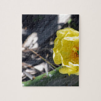 iridescent bee on nopales flower jigsaw puzzle