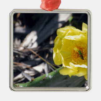 iridescent bee on nopales flower metal ornament