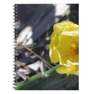 iridescent bee on nopales flower notebook