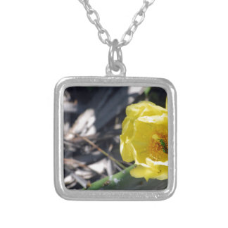 iridescent bee on nopales flower silver plated necklace