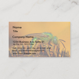 Iridescent business cards business card printing zazzle ca iridescent green sweat bees business card colourmoves
