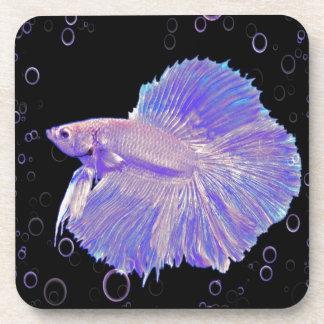 Iridescent Purple Fighting Fish Coaster