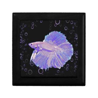 Iridescent Purple Fighting Fish Gift Box