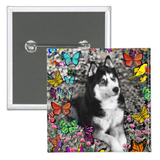 Irie the Siberian Husky in Butterflies 2 Inch Square Button
