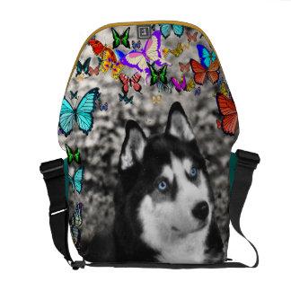 Irie the Siberian Husky in Butterflies Messenger Bag