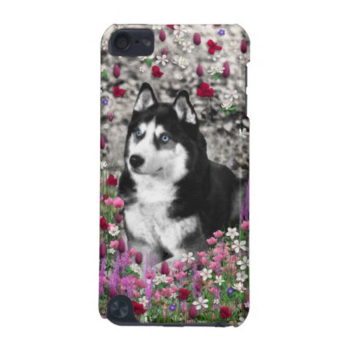Irie the Siberian Husky in Flowers iPod Touch 5G Cover