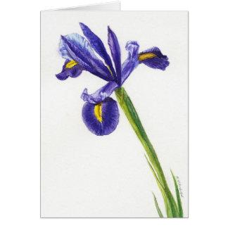 """Iris 2"" Card"