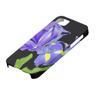 Iris 8 iPhone 5 cover