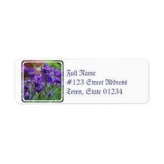 Iris assez sibérien étiquette d'adresse retour