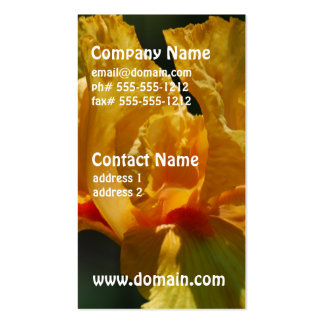 Iris barbu jaune modèles de cartes de visite