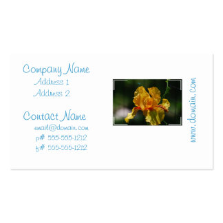 Iris barbu jaune cartes de visite personnelles